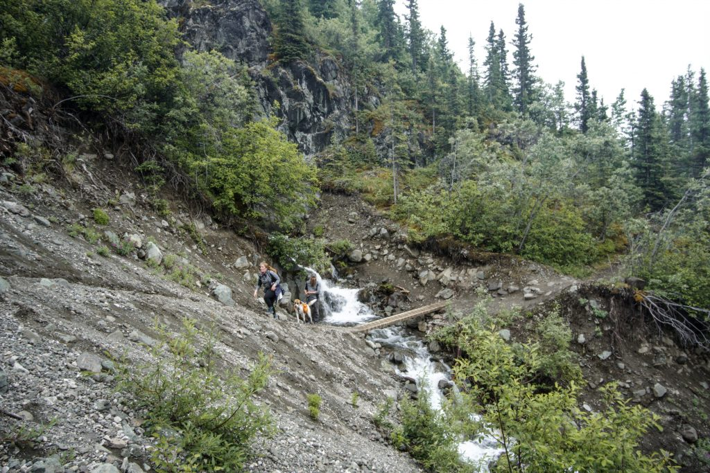 Hike Root Glacier Trail Alaska