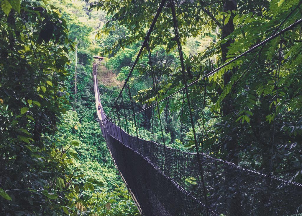 Los Campesinos Costa Rica