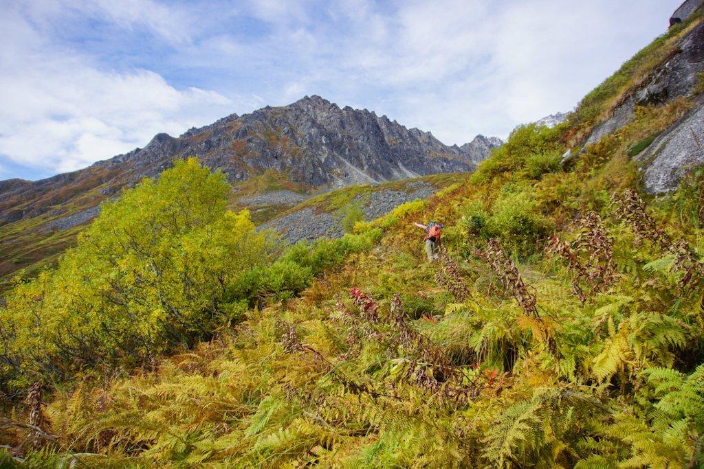 Hike Reed Lakes Trail Alaska