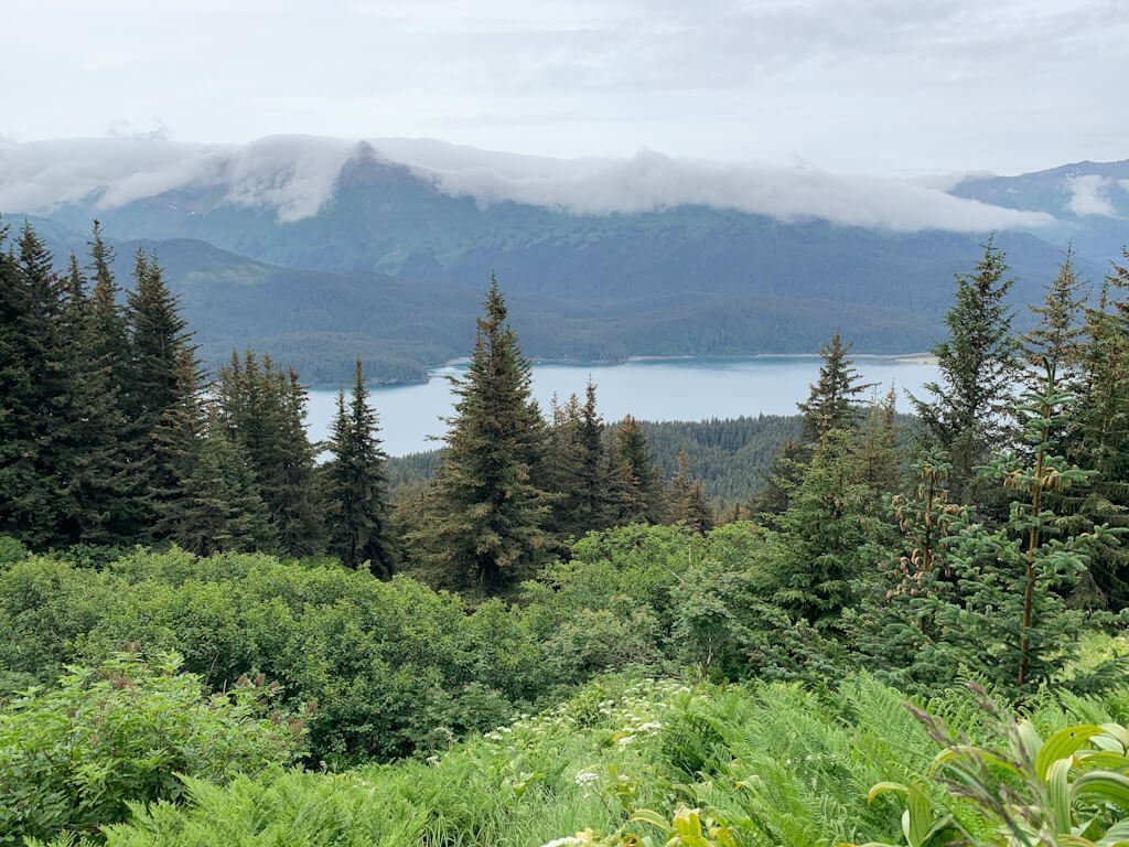 Views of Tutka Bay Alaska