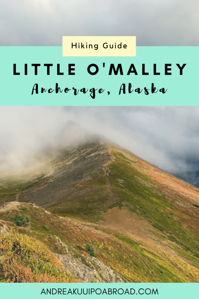 Planning a trip to Anchorage? Little O'Malley Peak is one of the best day hikes in Anchorage and offers amazing views of the city. #alaska #hiking #outdoors #anchoragealaska #anchorage #mountain