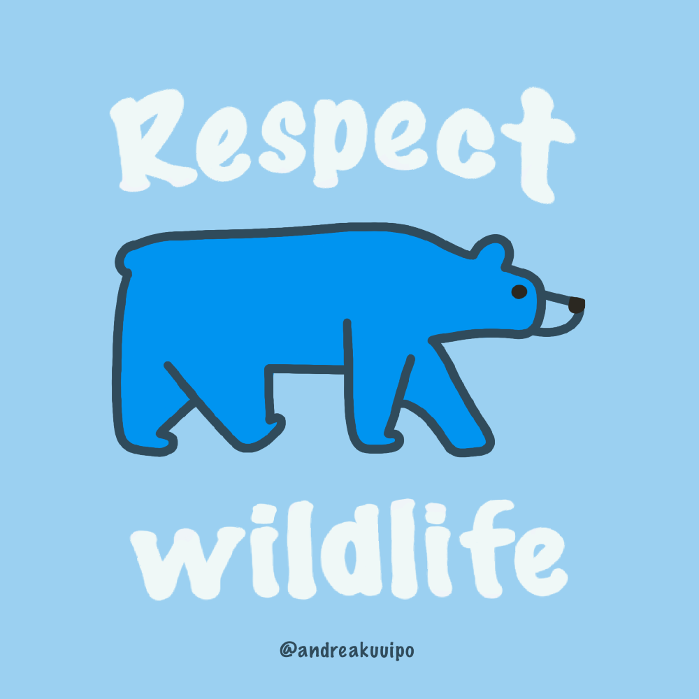 Leave No Trace 7 Principles Respect Wildlife