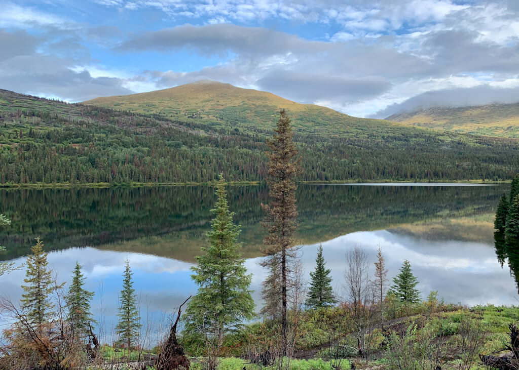 Best Hikes in Hope Alaska Resurrection Pass Trail