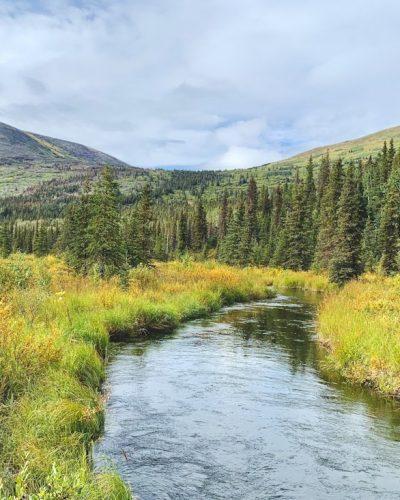 Backpacking Resurrection Pass Trail in Alaska