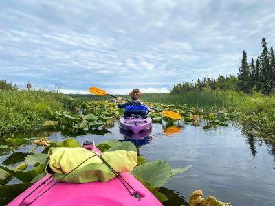 Swan Lake Canoe Trail