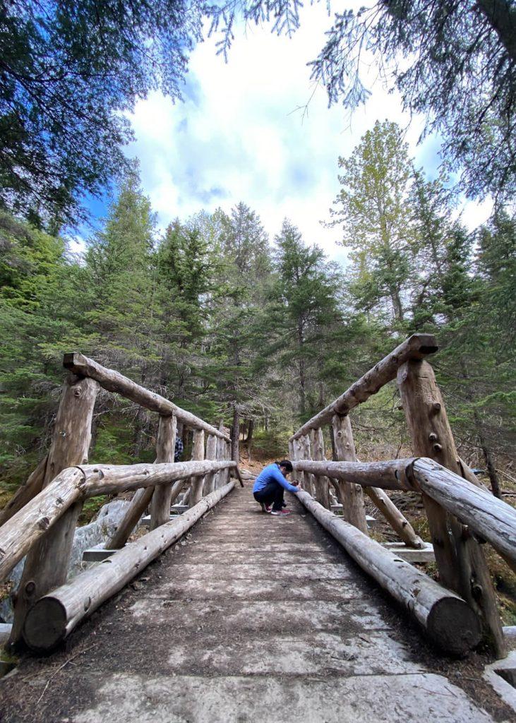 winner creek gorge bridge