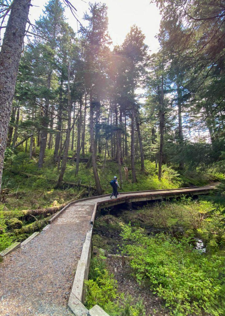 wooden boardwalk trail alaska