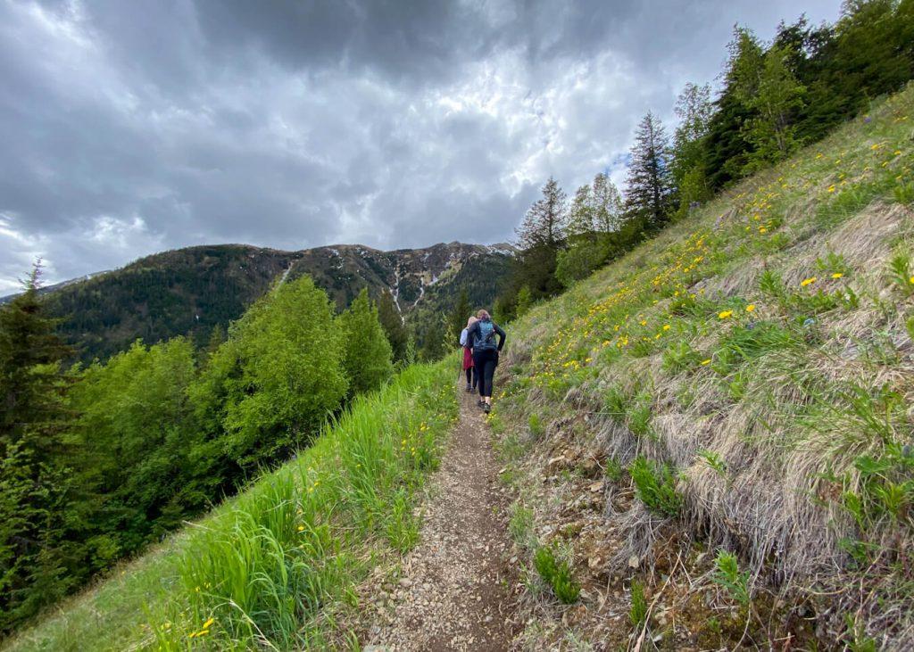 alaska hiking trail