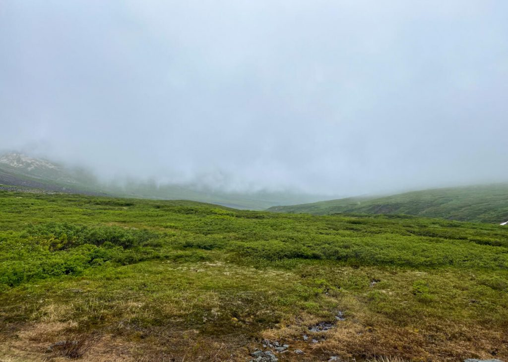 socked in valley backpacking trip