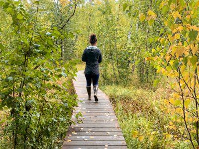 Hike Wasilla Creek Boardwalk Trail